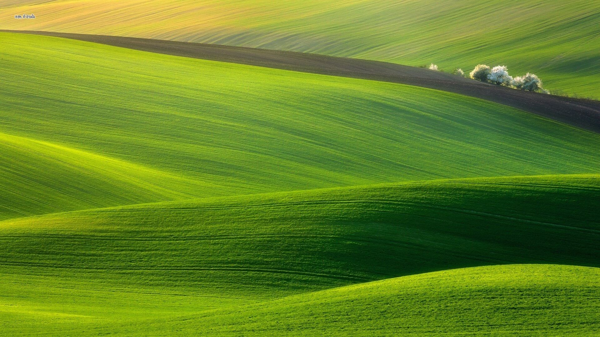 Land-Green-Computer-Wallpaper-e1392725817876